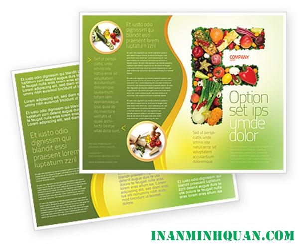 Thiết kế Brochure thực phẩm chuyên nghiệp hiện đại dành cho doanh nghiệp tại TP. HCM 2014 - 2015 phần 1