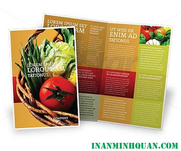 Thiết kế Brochure thực phẩm chuyên nghiệp hiện đại dành cho doanh nghiệp tại TP. HCM 2014 - 2015 phần 2