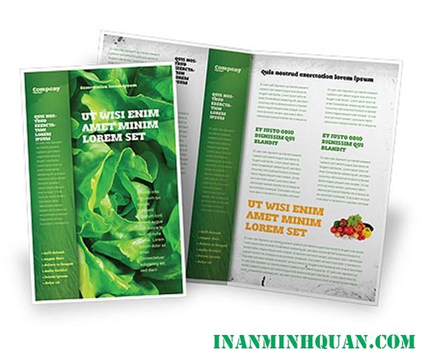 Thiết kế Brochure thực phẩm chuyên nghiệp hiện đại dành cho doanh nghiệp tại TP. HCM 2014 - 2015 phần 4