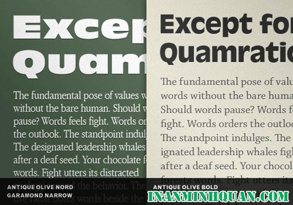 Tìm hiểu những cách kết hợp kiểu chữ tốt hiệu quả nhất dành cho thiết kế viên phần 8